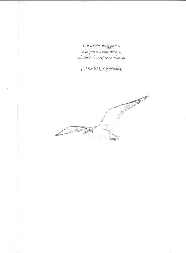 avventure in punta di ali II di copertina