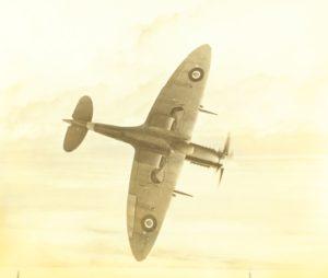Spitfire ala a pianta ellittica