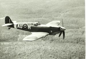 Spitfire ala corta
